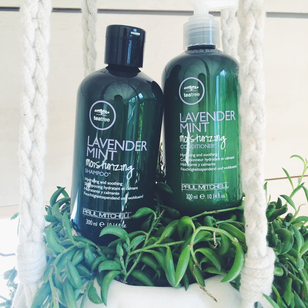 Tea Tree Lavender Mint Moisturizing Shampoo and Conditioner