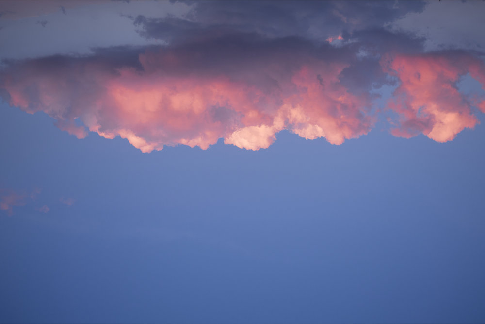 PINK CLOUD   Blooming cloud during sunset