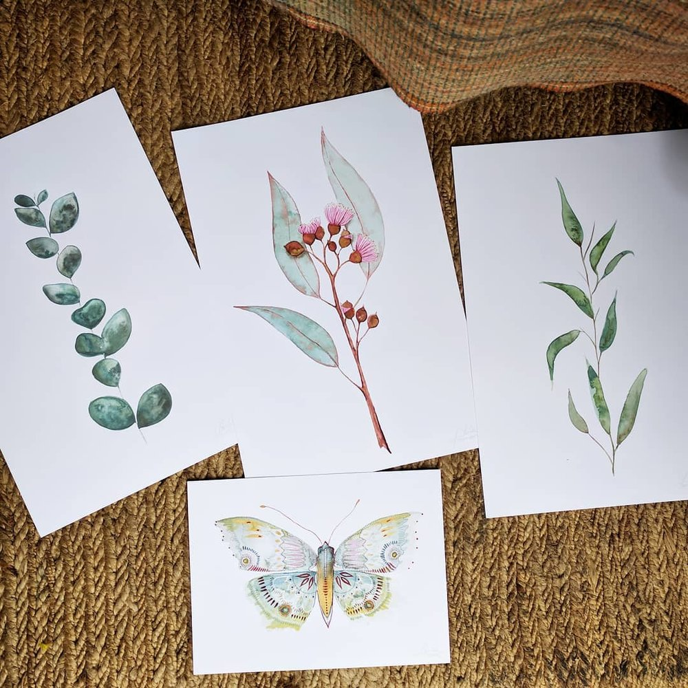 wholesale art flora fauna australian watercolour gift print