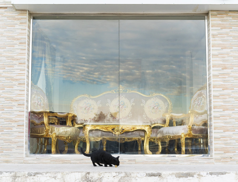 Farah Al Qasimi,  Furniture Market, Stray Cat , 2018