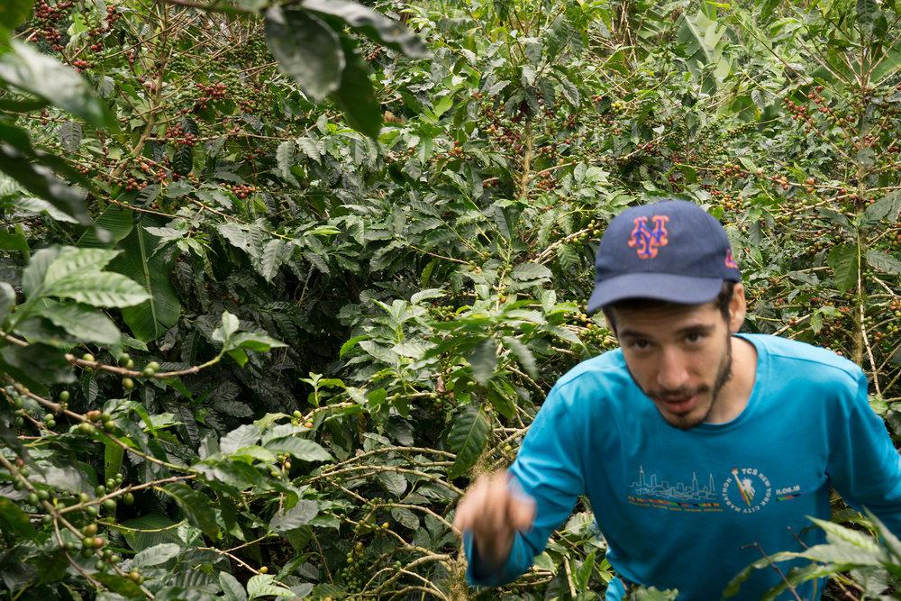 Jon in the fields, Matagalpa, Nicaragua