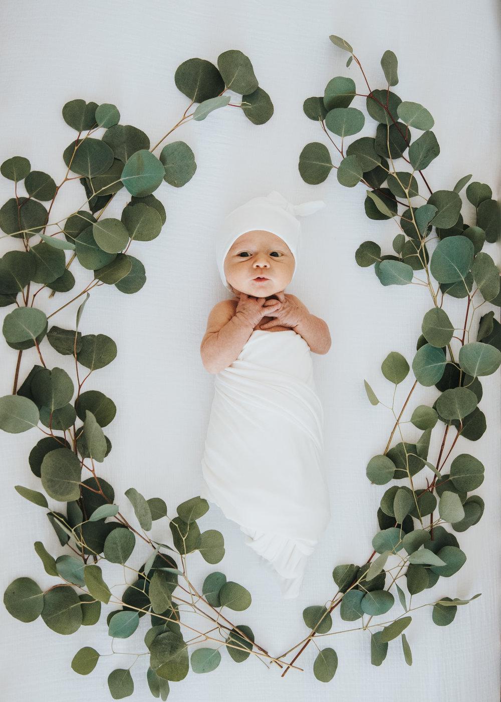 Baby Auzzie