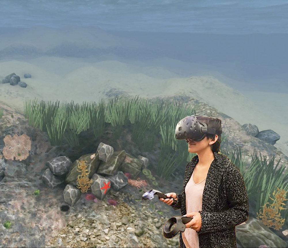 Ocean_VR1.jpg