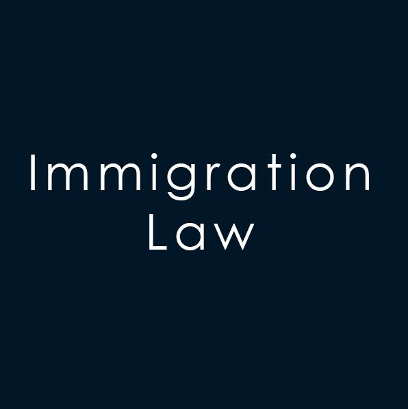 Immigration      L-1 Visa      H-1B Visa      Extraordinary Ability Aliens      Citizenship      Green Card