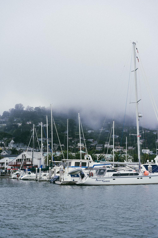 SF_sailing-03409.jpg