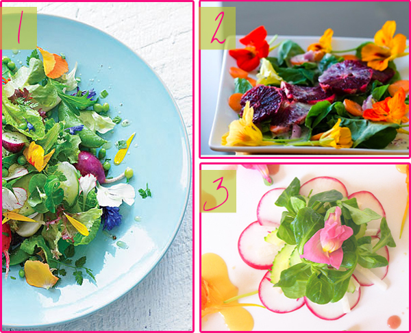 summer, spring, salad, edible flowers, recipe
