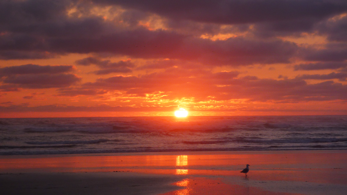 cannon beach, oregon, sunset, travel, road trip, adventure