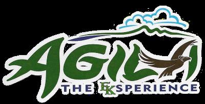 Agila_The_EKsperience_logo.png