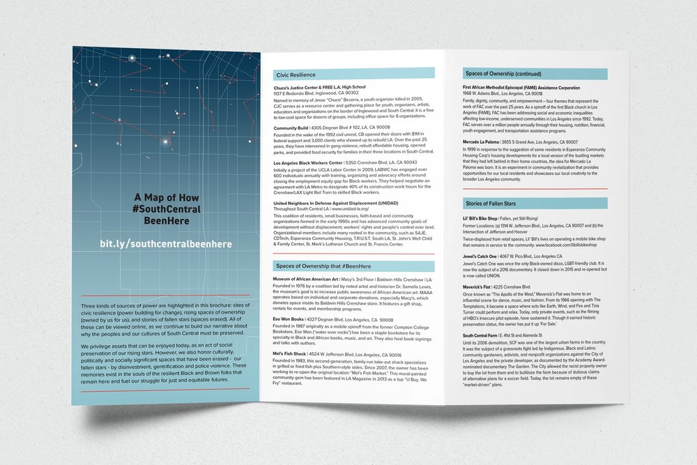 TCP_Brochure_mockup2.jpg