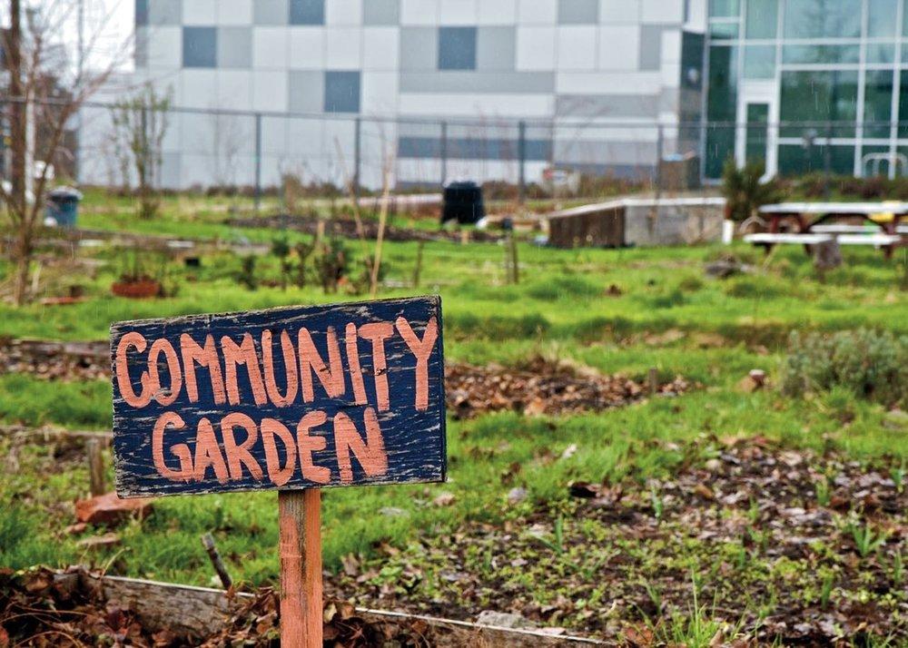Community Garden.jpg