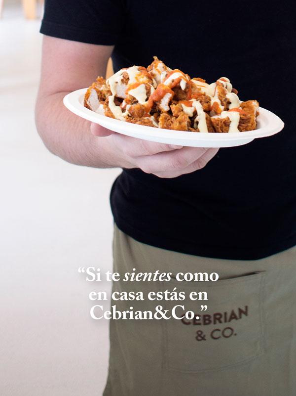 pollo bravo cebrian