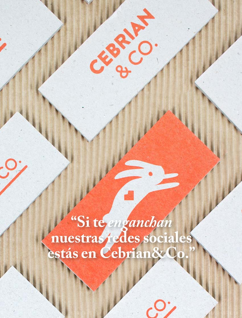 cebrian and co diseño