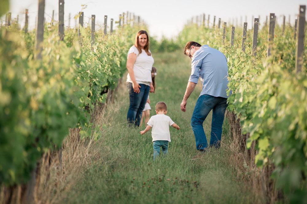 Sandra Ruth Fotografin Familie Stuttgart  Eltern und Sohn in den Weinbergen.jpg
