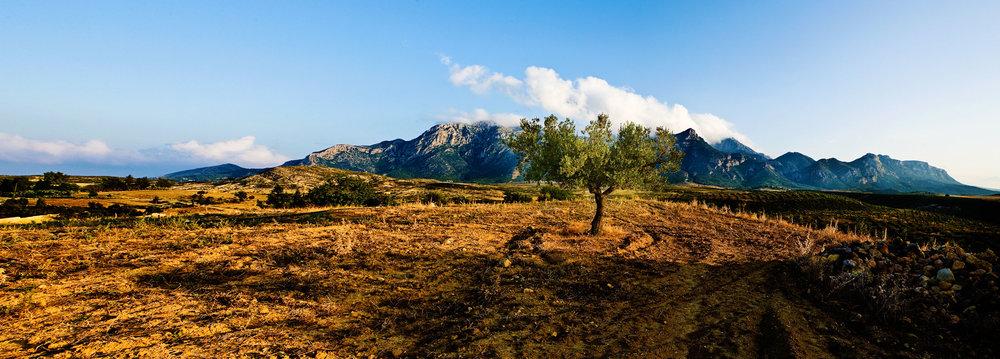 Panorama Zaghouan_.jpg