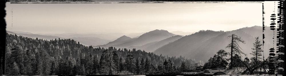 Sequoia Valley-1 (1).jpg