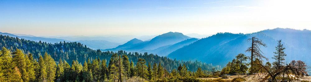 Sequoia Valley-1.jpg