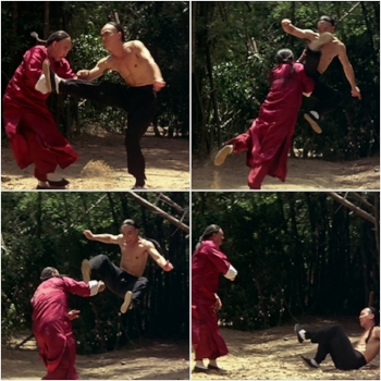 Scene from The Prodigal Son (1981) where Sammo Hung shows Yuen Biao why Wing Chun doesn't use high kicks.
