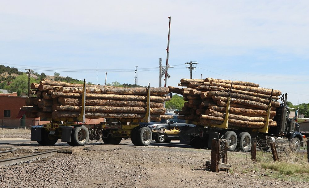 A logging truck in Colorado. ( Photo: Wikimedia Commons )