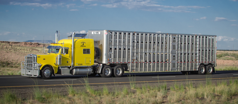 Efforts are being made to exempt livestock and certain agricultural haulers from ELD and hour-of-service rules, but a trucking group and safety advocacy organization are fighting back. ( Photo: Truckstockimages.com )