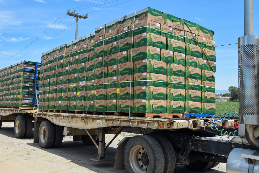 Iceberg lettuce is packed in the fields directly onto pallets in California. Drivers still have questions about when they can use the 150 air-mile exemption for agricultural products. ( Photo: Shutterstock )