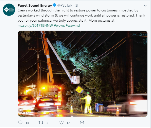 Puget Siund Energy_3.PNG