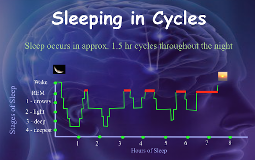 SOURCE: SLEEP SCIENCE CONSULTING