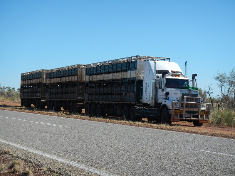 Pictured: an Australian livestock-hauling road train is parked at the side of a road. Livestock haulers will greatly benefit from a programme of livestock-haulage related road upgrades in Northern Australia.  (Photo: CSIRO and Dr Ian Watson).