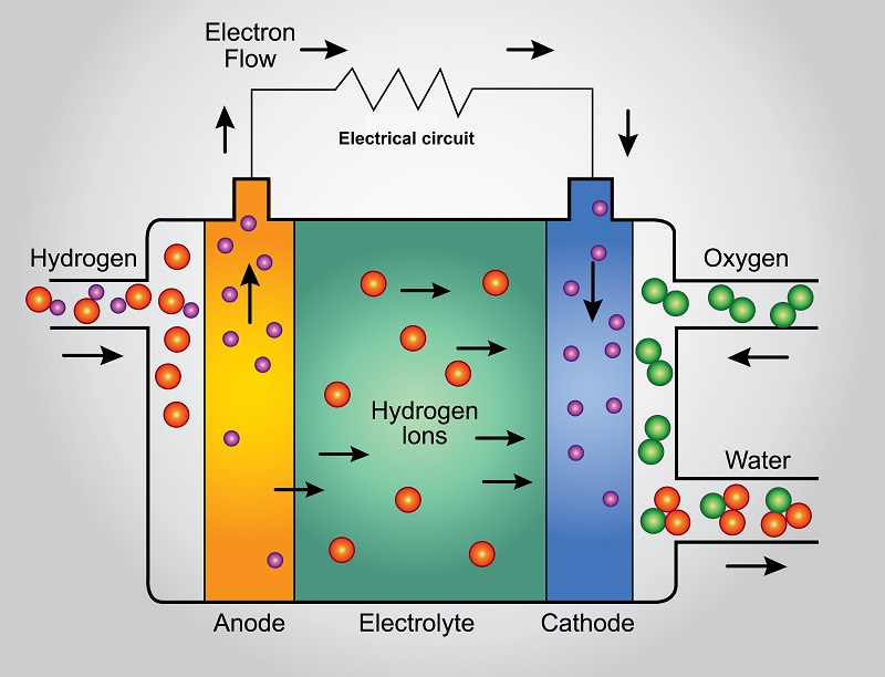 A highly simplified schematic of how a hydrogen fuel cell works. Polymer Electrolyte fuel cells are suitable for vehicles (Graphic: Shutterstock).