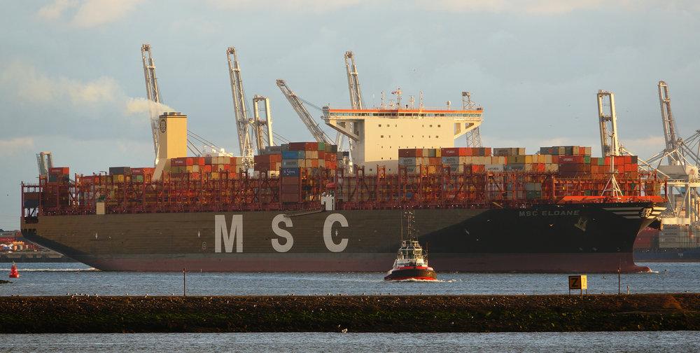 MSC Eloane ( Photo: Wikimedia )
