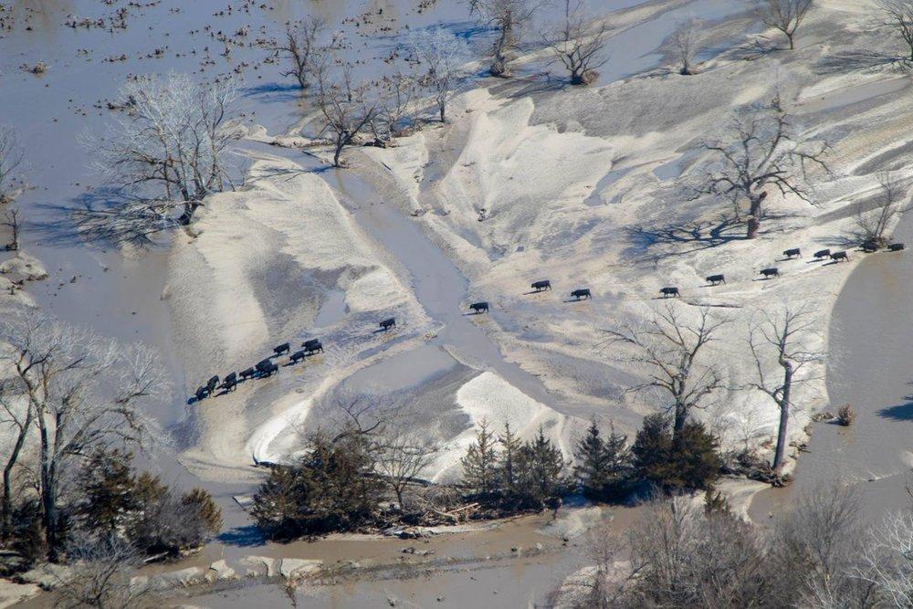 Flooded farm in Nebraska, March 2019.  (Photo: Nebraska National Guard)