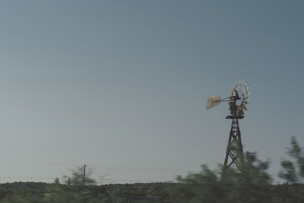 SDP_8356.jpg