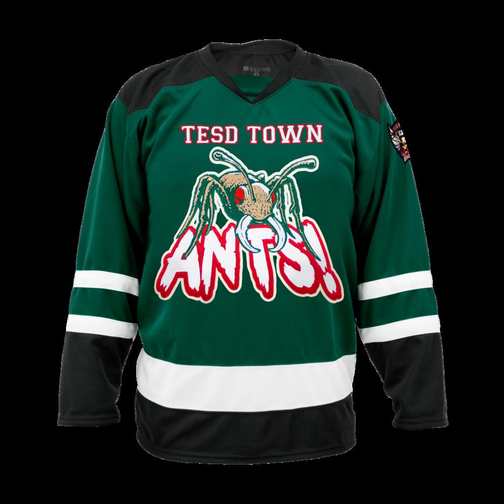 Tell 'em Steve-Dave hockey jersey