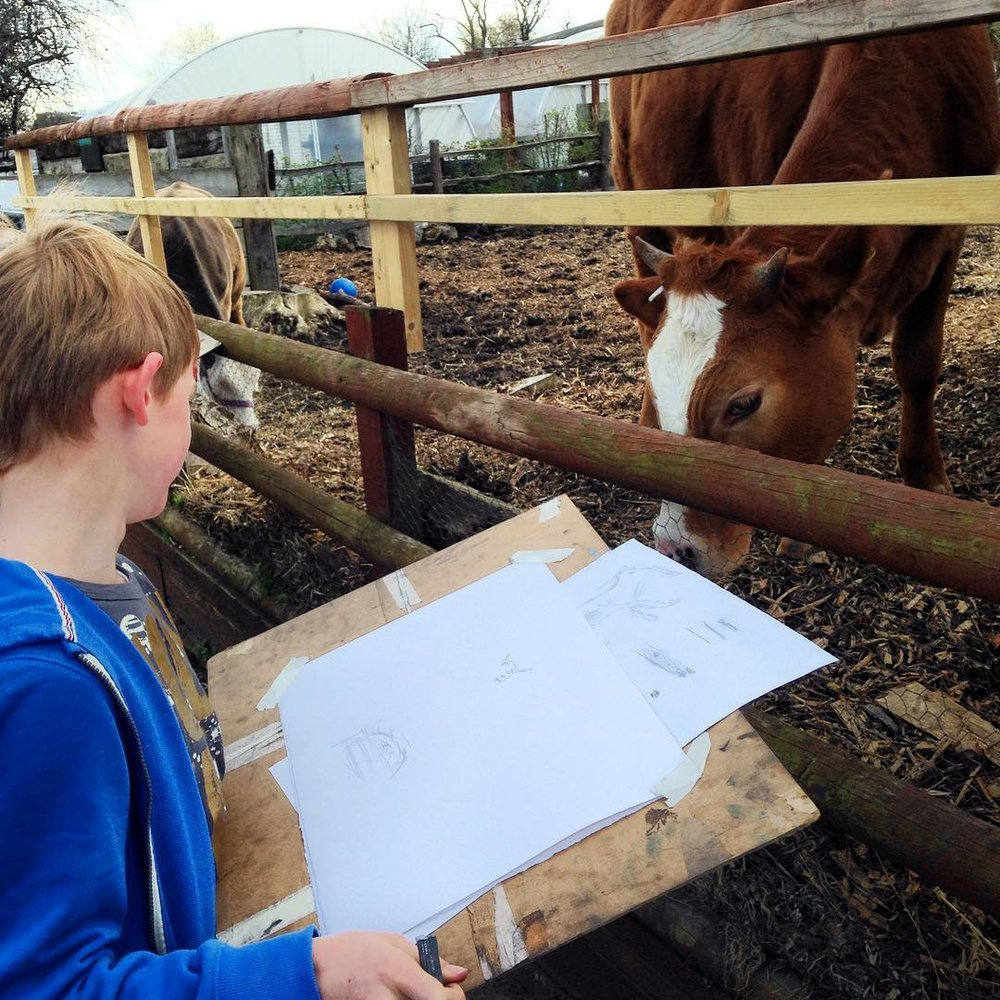 Drawing at Hackney City Farm