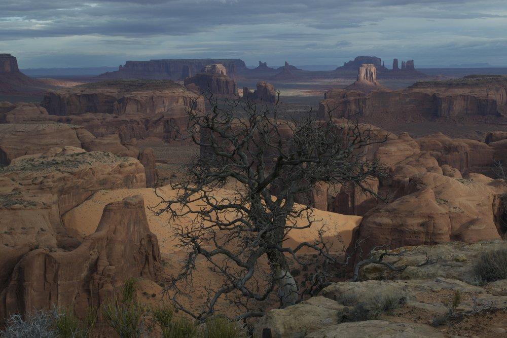 Shady Hunts Mesa