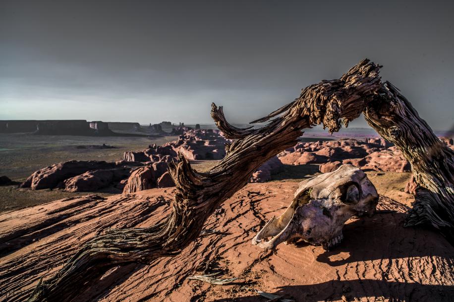Desert Death