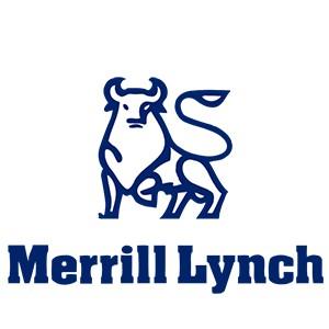 Merrill Lynch Michael Veltri Testimonial