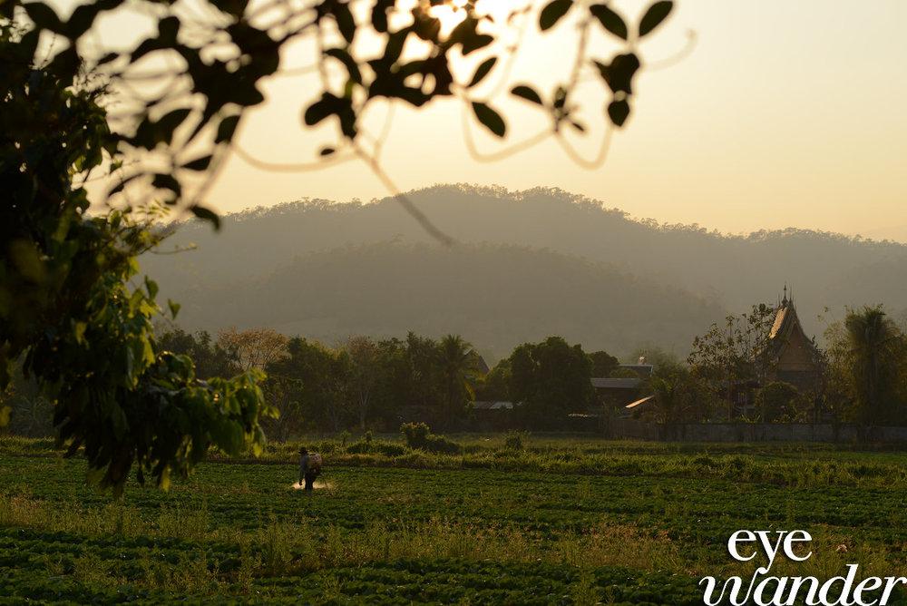 thailand0929.JPG