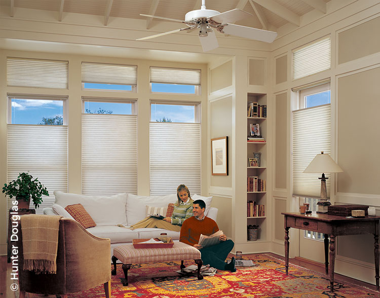 HD_res_honeycomb_shades2.jpg