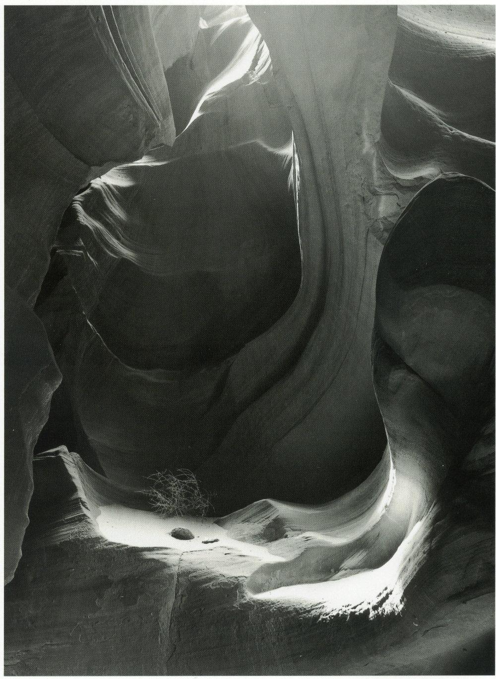 scan1.jpg