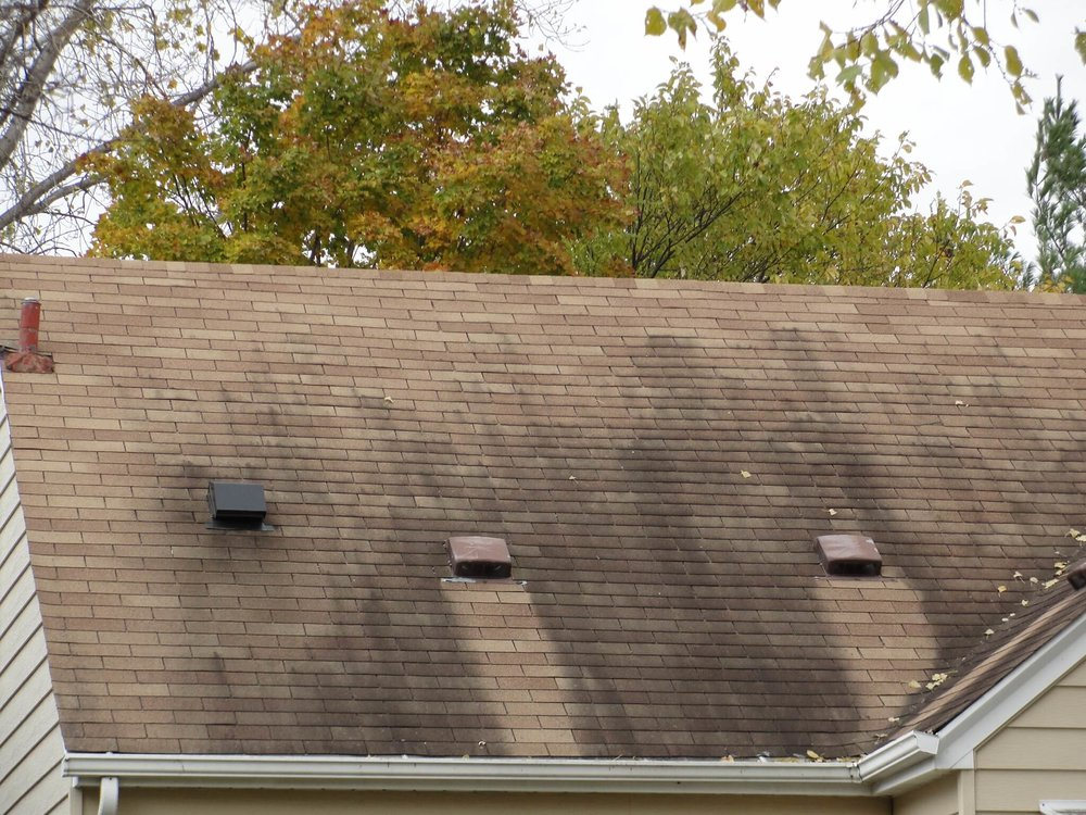 black-streaks-on-roof-shingles.jpg