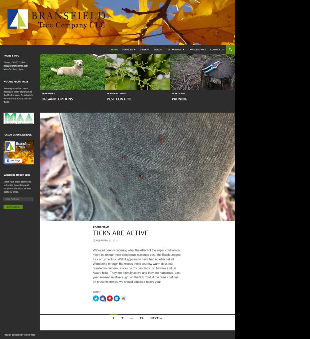 Previous Site - Wordpress