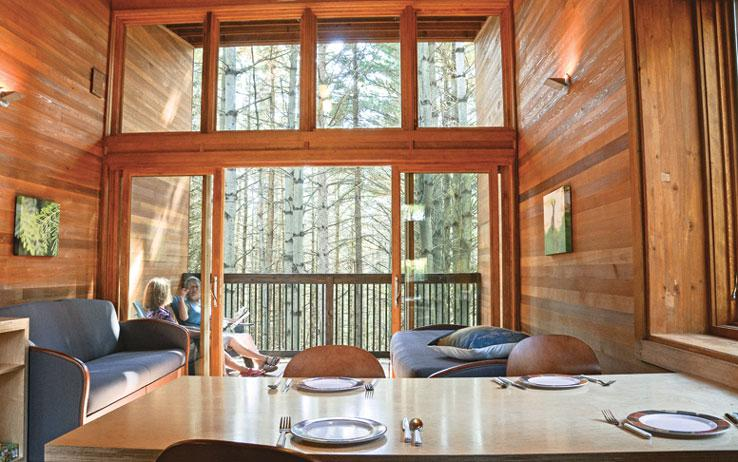 A lofted view of the surrounding trees makes this cabin the ideal spot for a staycation getaway. /  Source