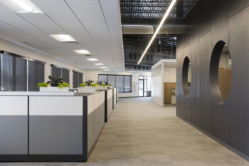 Open Office Design | Vela Creative