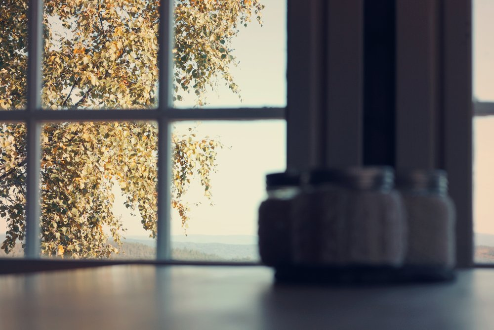 An upper level kitchen perches on the same level as the surrounding tree canopy, offering unfiltered views of the shifts in season as the leaves progress in their annual life cycle. / Source: Ewa Stepkowska via    Unsplash