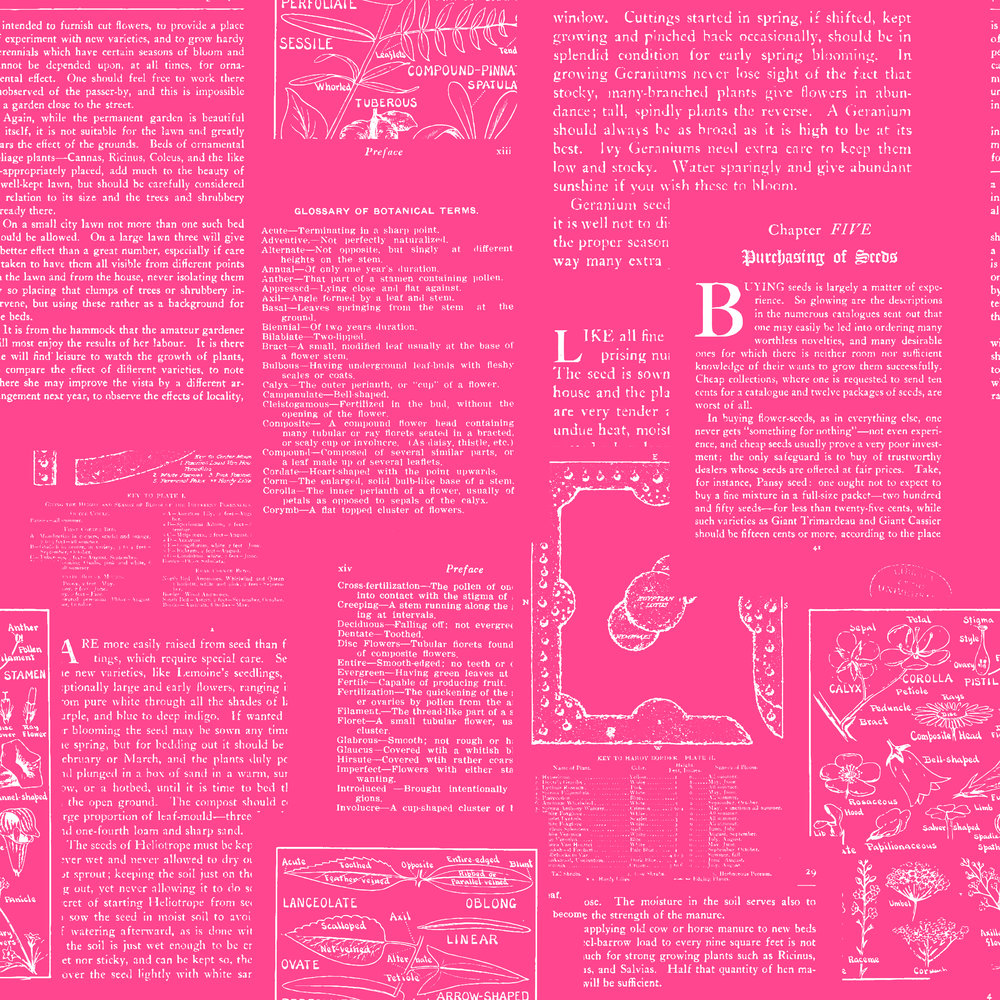 book pages pink with white-01.jpg