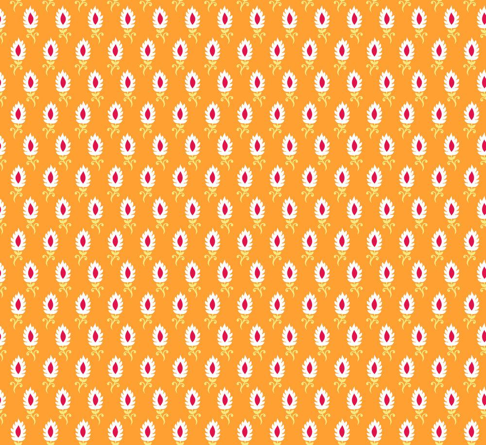 bindi orange-01.jpg