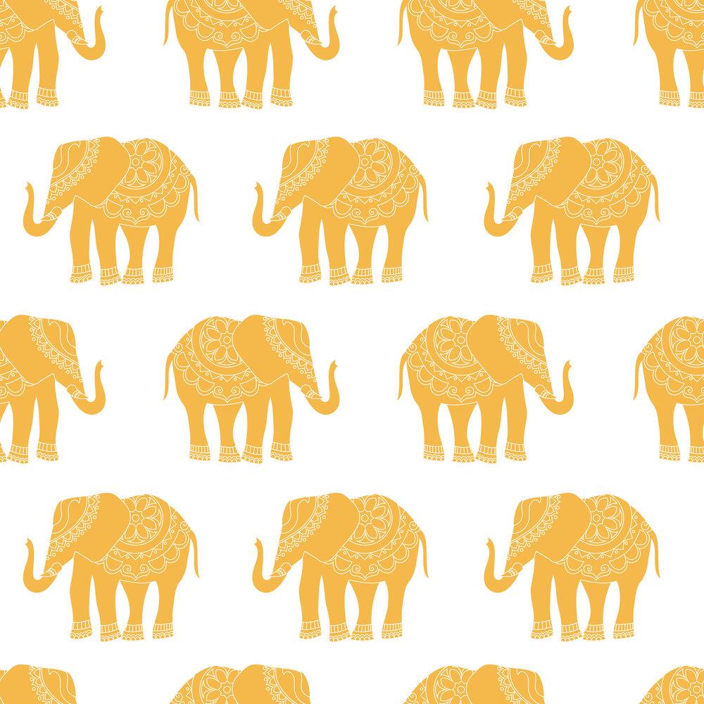 elephant orange-01.jpg