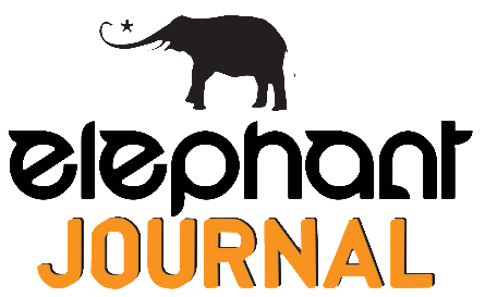 elephant-journal.png