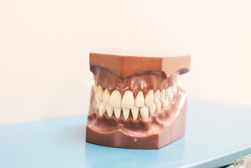 Dental Gums