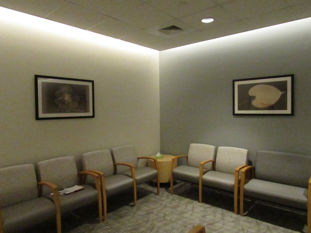 """Corporate Collections - Ocshner Digital Imaging Center - through Where Y'art Gallery, many of my lumen prints, serving as """"natural x-rays"""" were selected for several Ocshner Digital Imaging Centers throughout the New Orleans area."""